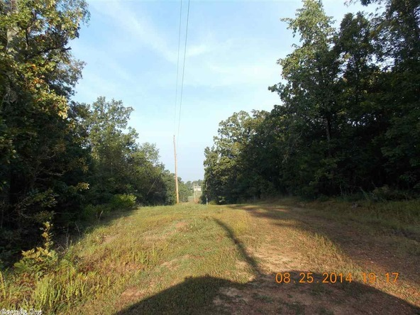 1105 Walnut Grove Rd., Hector, AR 72843 Photo 11