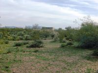 Home for sale: 256xx W. Paseo del Oro --, Morristown, AZ 85342