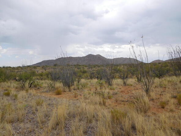 16705 S. Sierrita Mountain, Tucson, AZ 85736 Photo 6