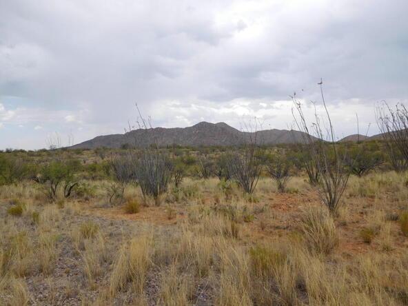 16705 S. Sierrita Mountain, Tucson, AZ 85736 Photo 12