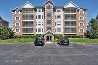 Home for sale: 7920 Trinity Cir., Tinley Park, IL 60487