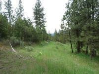 Home for sale: Lot 2 Woodland Dr., Garden Valley, ID 83622