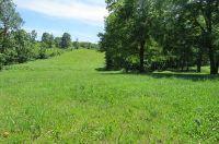 Home for sale: Lot 21 Tolbert Ct., Spokane, MO 65754