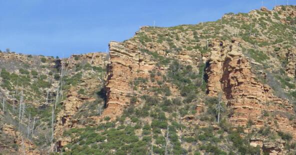 220 W. Zane Grey Cir., Christopher Creek, AZ 85541 Photo 51