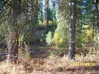 Home for sale: Lot 11 Ponderosa Pines, Boise, ID 83716