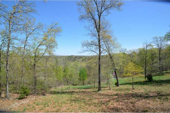 13819 187 Hwy. Blue Meadow, Eureka Springs, AR 72631 Photo 8