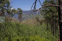 Home for sale: Tbd Lake View Dr., Bayfield, CO 81122