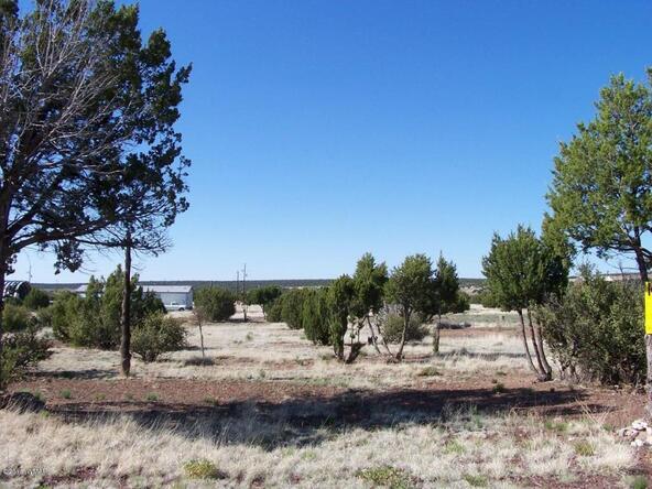 8482 Basalt Pl., White Mountain Lake, AZ 85912 Photo 13