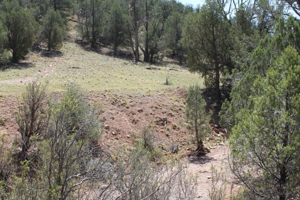 273 Arizona Rd., Ash Fork, AZ 86320 Photo 10