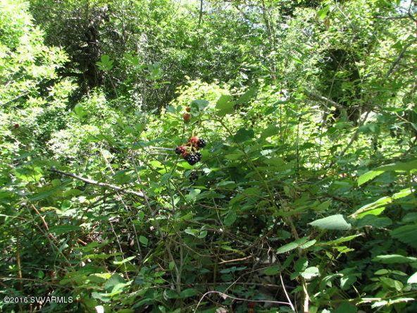 365 Bear Wallow Ln., Sedona, AZ 86336 Photo 20