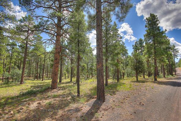 1729 S. Pine Ridge Dr., Williams, AZ 86046 Photo 5