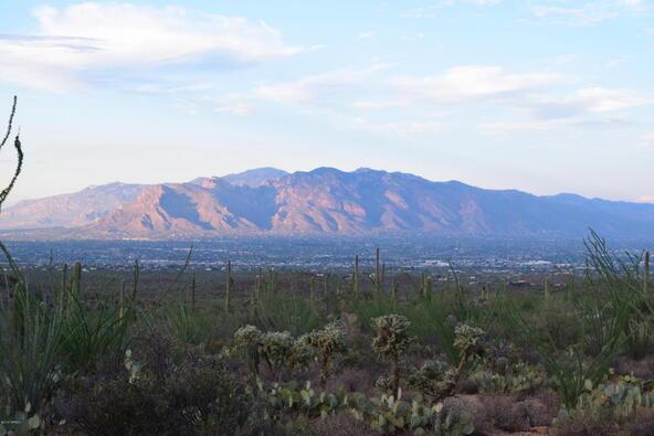 6tbd W. Sweetwater, Tucson, AZ 85745 Photo 3
