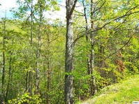 Home for sale: Lot 63e Redtail Rd., Sevierville, TN 37862