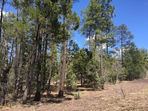 790 W. Pine Spruce Ln., Pinetop, AZ 85935 Photo 4