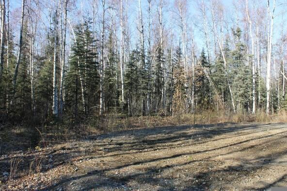 14094 E. Iditarod Cir., Willow, AK 99688 Photo 3