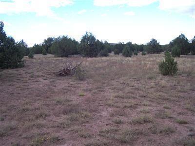 1805 W. Cumberland Parcel J Rd., Ash Fork, AZ 86320 Photo 1