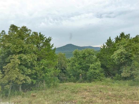1252 Nc 3600 Rd., Western Grove, AR 72685 Photo 36