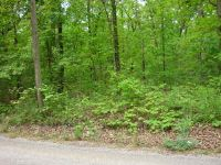 Home for sale: Tbd County Rd. 3440, Mountain View, MO 65548