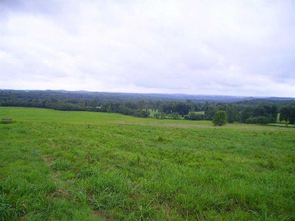 17001 N. Hwy. 7, Lead Hill, AR 72644 Photo 11