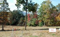 Home for sale: Lt17 Jack Groves Ln., Hayesville, NC 28904
