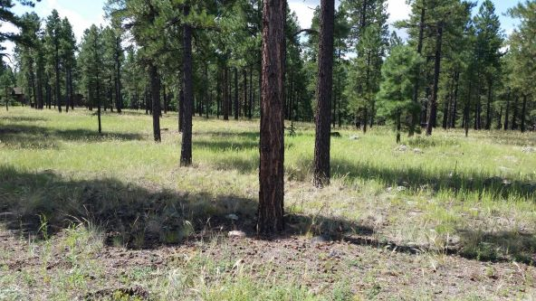 1993 W. Museum Trail, Flagstaff, AZ 86001 Photo 3