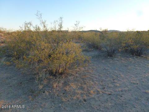 21755 W. Gibson Way, Wickenburg, AZ 85390 Photo 6