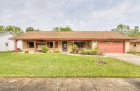Home for sale: 800 Scrub Oak St., South Daytona, FL 32119