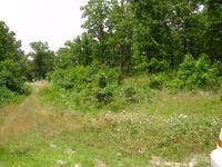 Home for sale: Twelve Oaks, Macks Creek, MO 65786