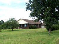Home for sale: 101 Laurel Avenue, Alton, MO 65606