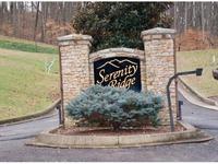 Home for sale: 5 Serenity Ridge Trail, Bristol, TN 37620