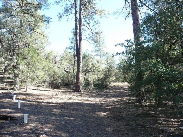 8b N. Chamberlain Trail, Young, AZ 85554 Photo 8