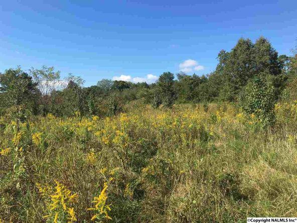 160 Webster Rd., Huntsville, AL 35811 Photo 4