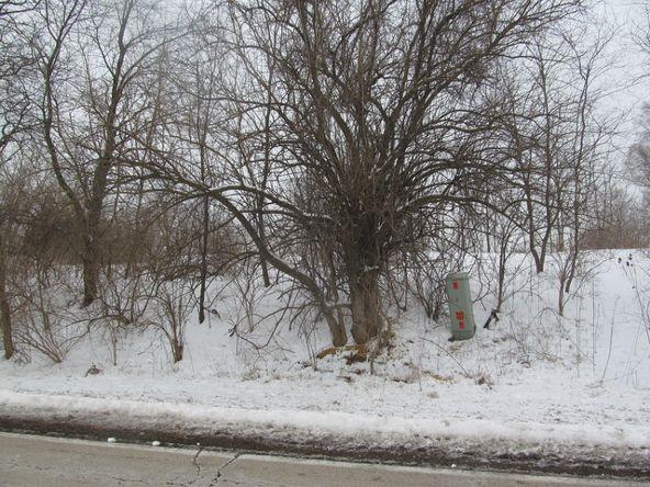 8601 West Sauk Trail Rd., Frankfort, IL 60423 Photo 2