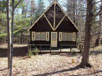 Home for sale: 2626 Birch Dr., Wolverine, MI 49799