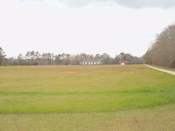95 Acres Hwy. 84, Dothan, AL 36312 Photo 3