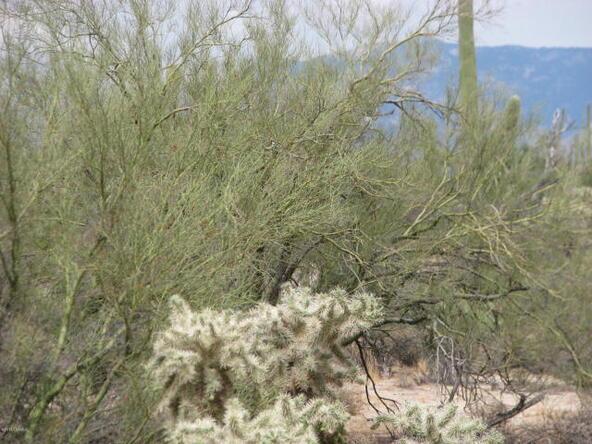 5352 W. Wild Desert Ln., Tucson, AZ 85742 Photo 13