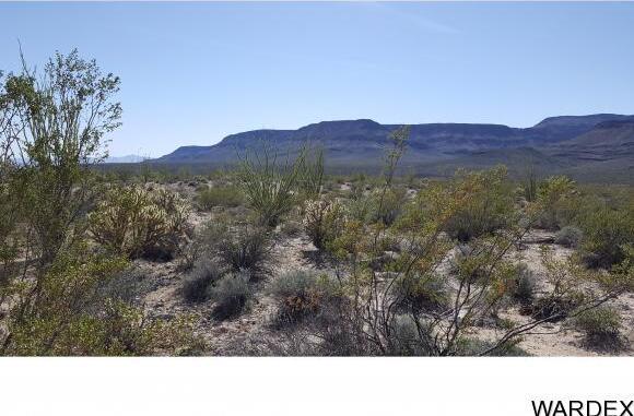 4332 W. Sunset Rd., Yucca, AZ 86438 Photo 7