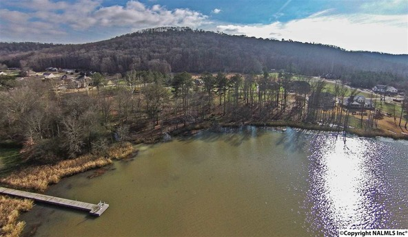 1 Lake Creek Dr., Guntersville, AL 35976 Photo 1