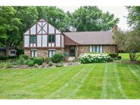 Home for sale: 1058 Van Tassel Dr., Sleepy Hollow, IL 60118