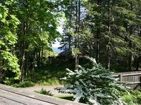 Home for sale: 7 Barnacles Way N.E. Harbor, Mount Desert, ME 04662