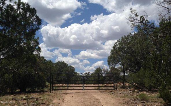 487 Sierra Verde Ranch, Seligman, AZ 86337 Photo 16