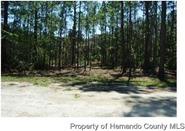 Home for sale: Webster, FL 33597