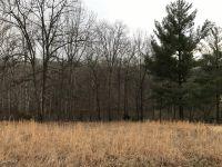 Home for sale: 00 Deer Ridge Rd., Goreville, IL 62939