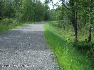 6276 Redtop Cir., Anchorage, AK 99507 Photo 5