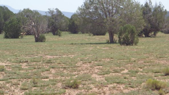 261 Juniperwood Ranch Lot 261, Ash Fork, AZ 86320 Photo 2