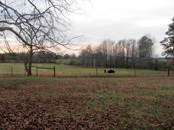 5013 County Rd. 57, Dawson, AL 35963 Photo 24