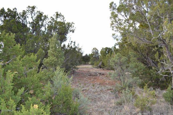 1524 Rocky Top Dr., Heber, AZ 85928 Photo 16