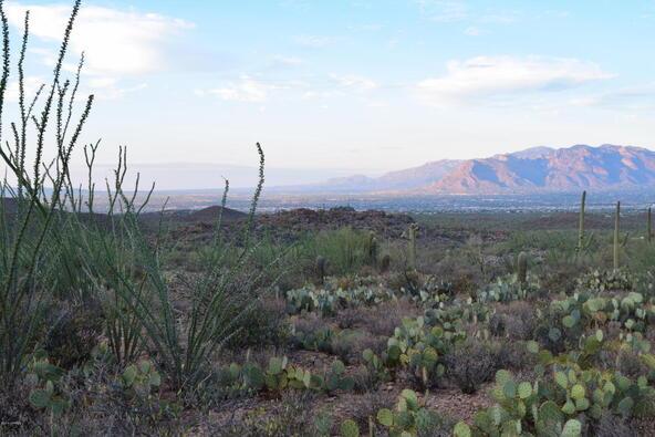 6tbd W. Sweetwater, Tucson, AZ 85745 Photo 9