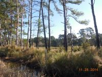 Home for sale: 0 Perimeter Rd., Sapelo Island, GA 31327