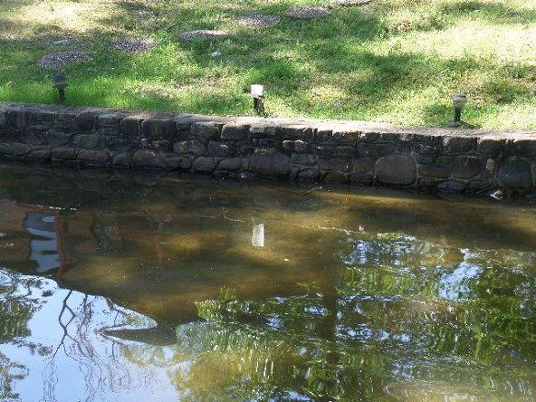 114 Starlite Bay, Hot Springs, AR 71913 Photo 8